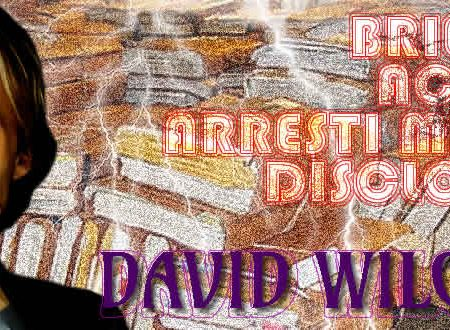 Briefing Accuse Arresti Mirati Disclosure Terza Parte David Wilcock